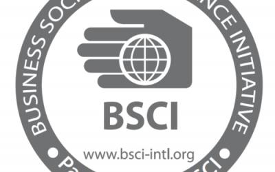 Standards BSCI (Business Social Compliance Initiative)